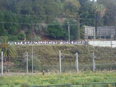 2/8 People Running