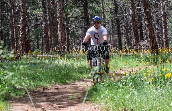 Levitt Biking Trip