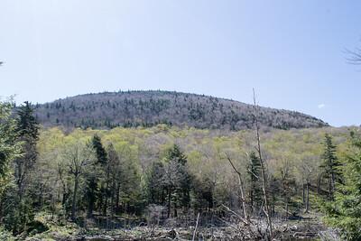 Sugerloaf-Plateau - 5/20/14