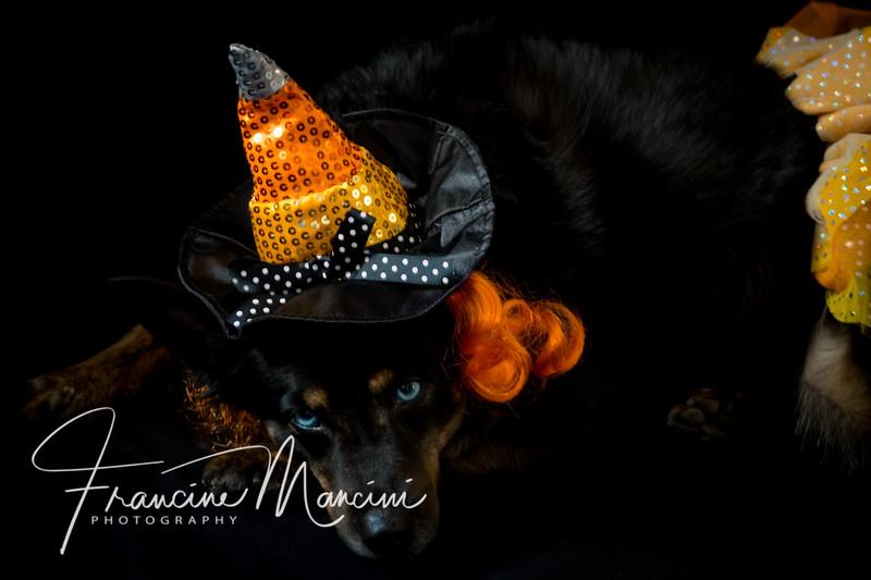 2018   Halloween 2_114.jpg