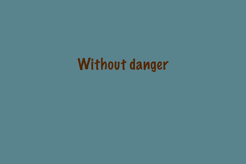 Without danger GR.jpg
