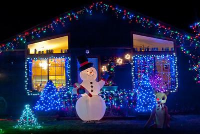 2014 SusanvilleStuff Christmas Light Gallery