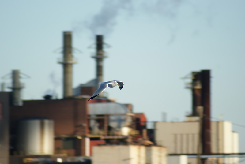 Factory fly by