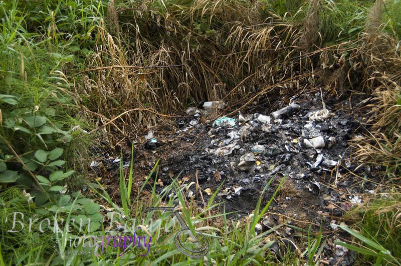 Coal Creek057.JPG