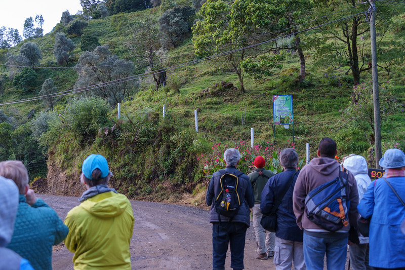 Costa Rica 2015-5026.jpg