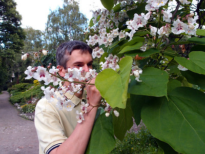 Botanic Garden Cracow summer 2012