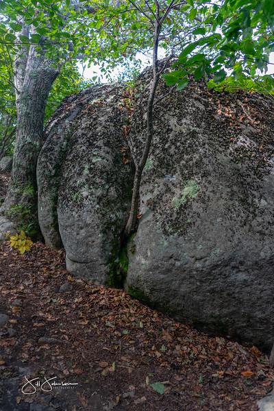 at hike-00406.jpg
