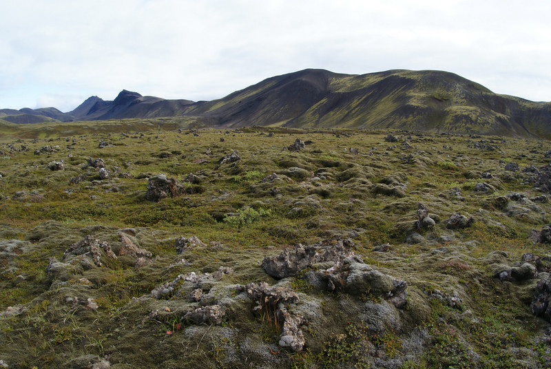 This is a fair depiction of the greater portion of the Icelandic countryside.  There is evidence of lava flows both recent and old.