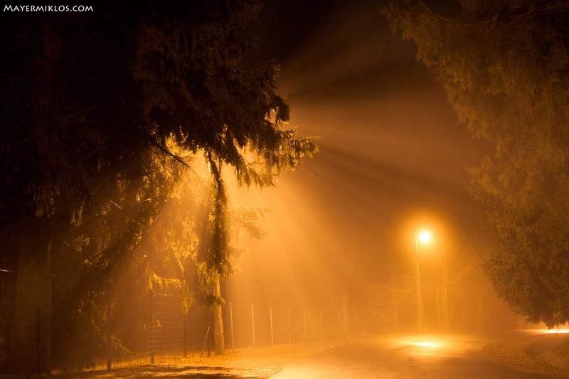 foggy street.jpg