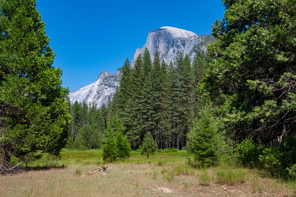Yosemite, CA (13 Images)