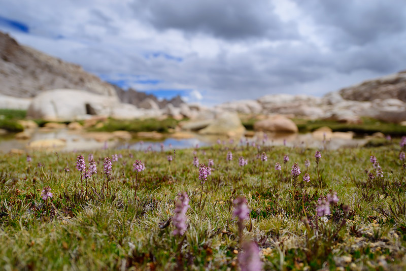 107-mt-whitney-astro-landscape-star-trail-adventure-backpacking.jpg