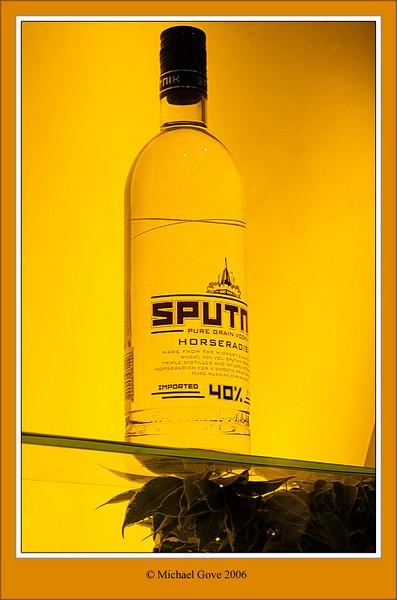 Sputnick (60473930).jpg