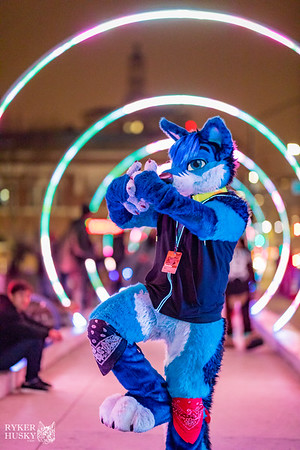 Further Confusion 2018