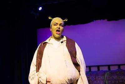 Shrek - The Musicall