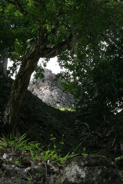 Guatemala Tikal 0 117.JPG
