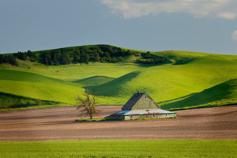 Pyramidal barn with green hills, Washington state
