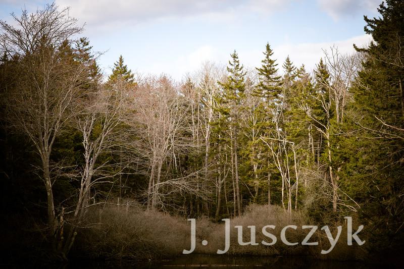 Jusczyk2021-6752.jpg