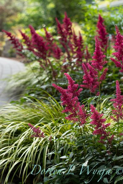 The Chartreuse Garden_1036.jpg