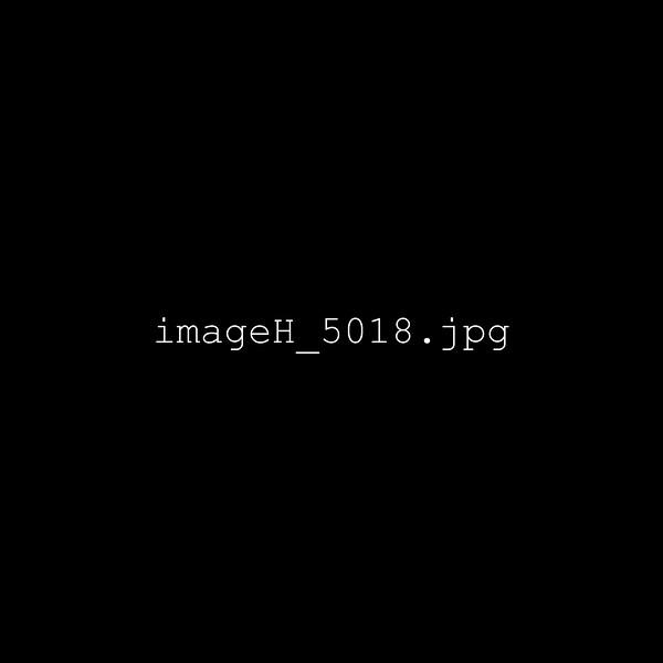 imageH_5018.jpg