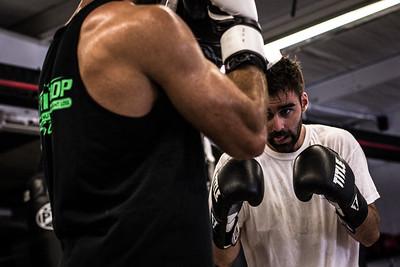 Fight Training