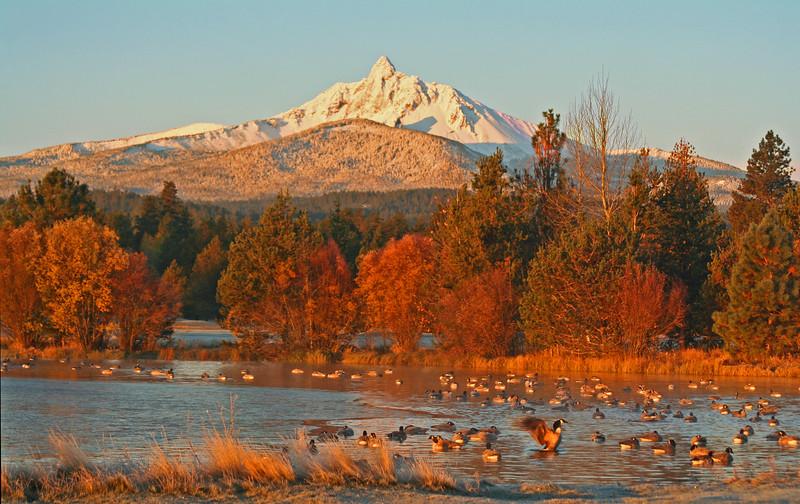 about_black-butte-ranch_Mt.Washington_geese_KateThomasKeown_1256.jpg