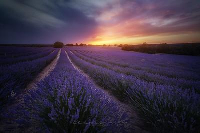 Spain Landscapes
