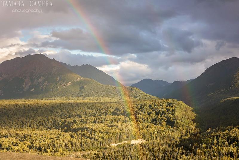 Rainbows-11.jpg