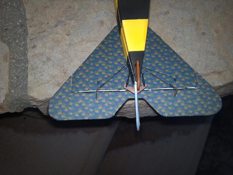 D8 tail.jpg