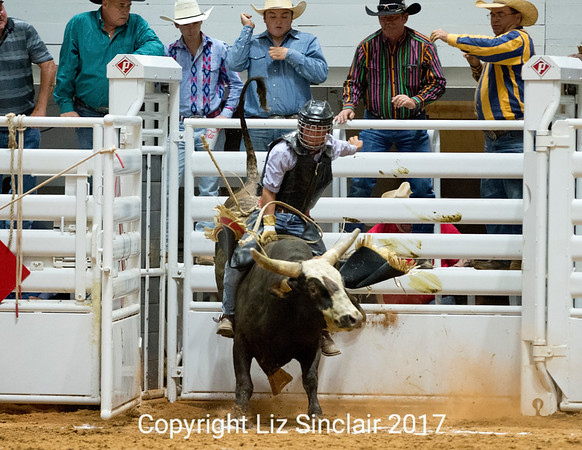 Cowboy Cops Benefit Rodeo Bulls
