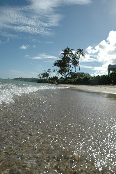 Hawaii - Kahala Beach-94.JPG