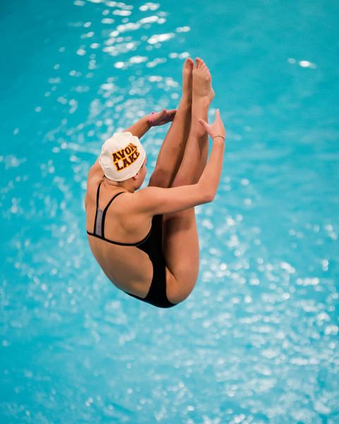 D1 Diving-3.jpg