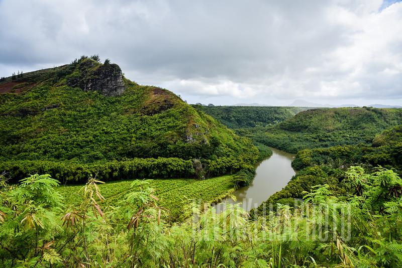Kauai2017-135.jpg