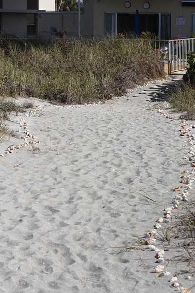 shells line the walkways