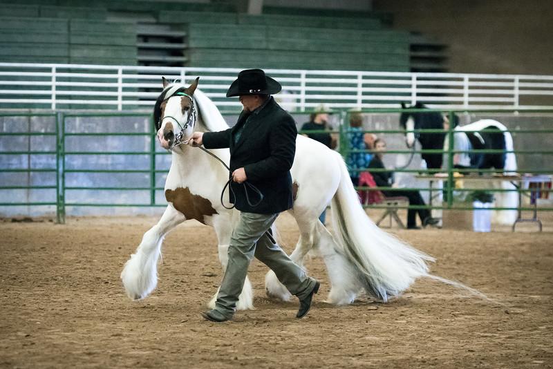 2017 Feathered Horse Classic Utah