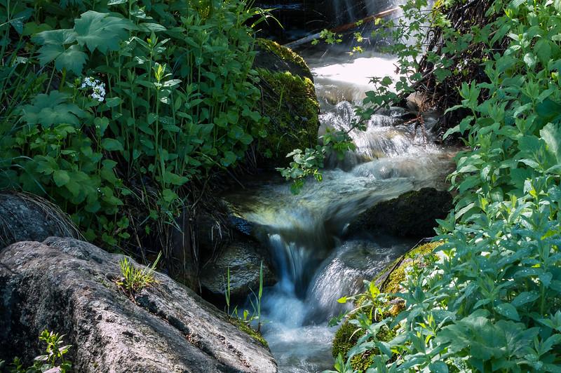 hidden mountain stream, photographed at slow shutter speed