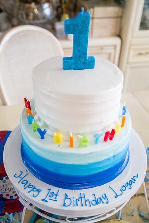 Logan's 1st Birthday Party!