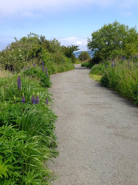 Seattle's best kept secret beach trail