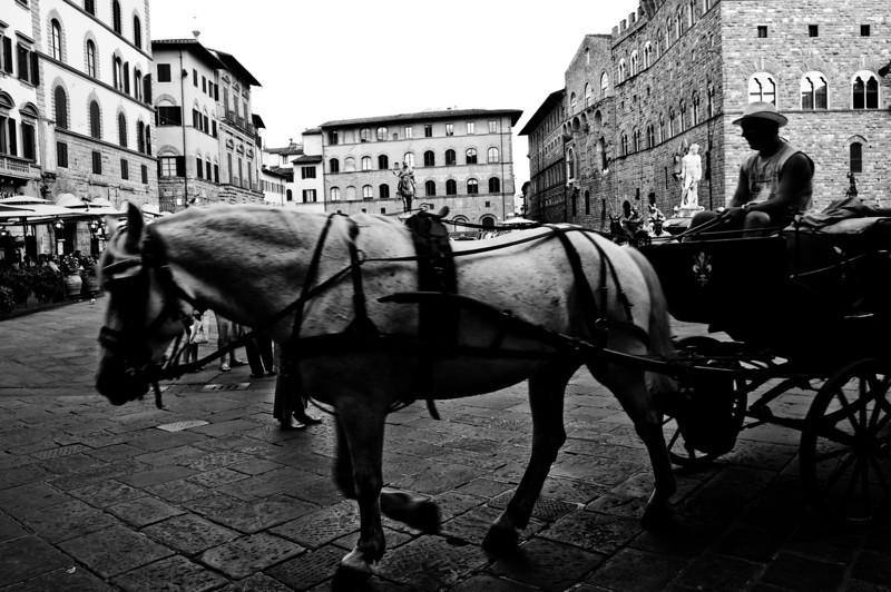 Florence15.jpg
