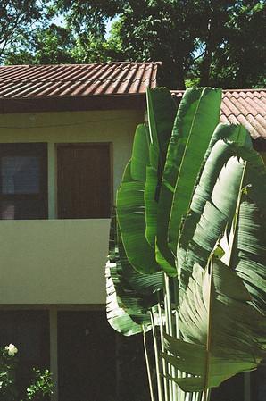 Guatemala 35mm Film '16