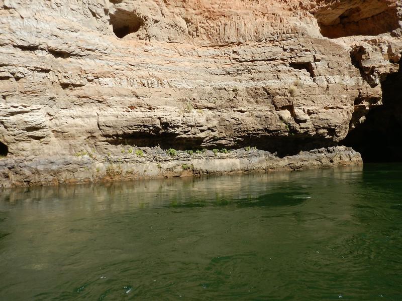Grand Canyon Rafting Jun 2014 046.jpg
