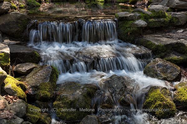 Yosemite - A River of Spring