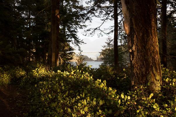 Deception Pass, Whidbey Island, Washington
