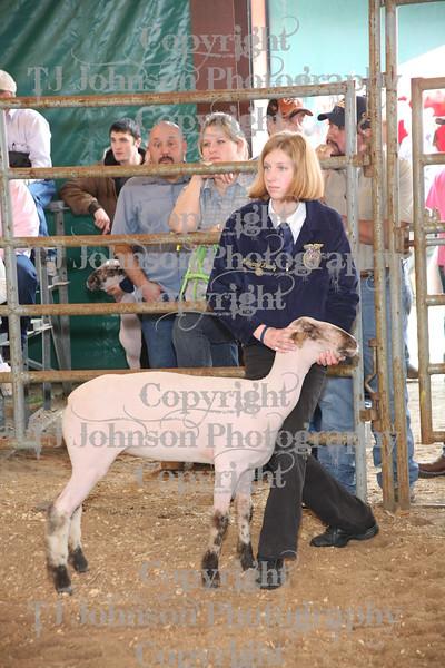 2011 Klein ISD Lamb Class 2