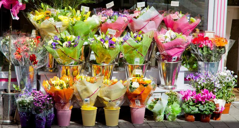 Kilkenny Flowers