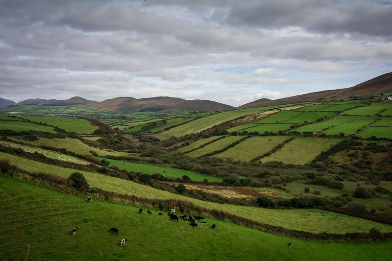 Ireland105.jpg