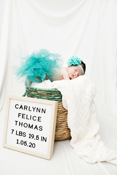 Hillary_Ferguson_Photography_Carlynn_Newborn190.jpg