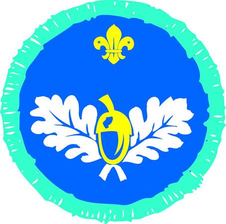 Explorer Scouts