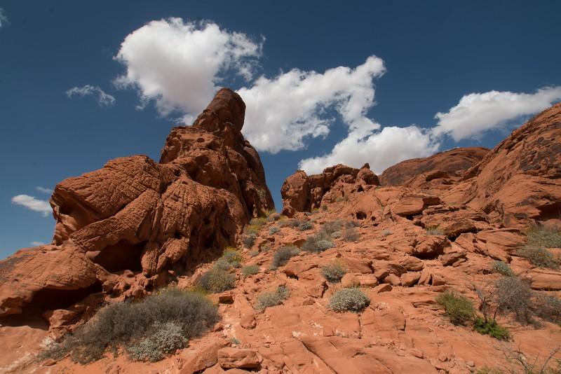 valley of fire (1 of 1).jpg