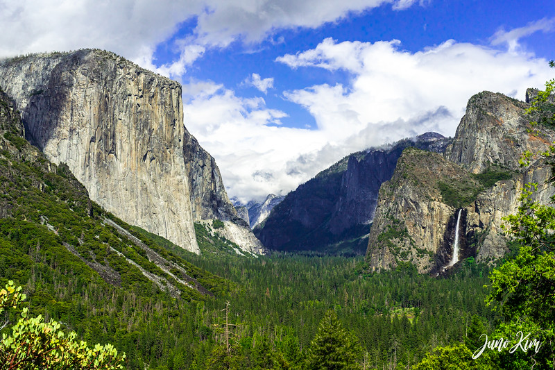 05.2021_Yosemite__DSC7351-Juno Kim-2000_color.jpg