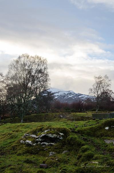 Scotland-Loch-Ness-8651.jpg